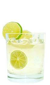Tequila & Schweppes Orange Recipe